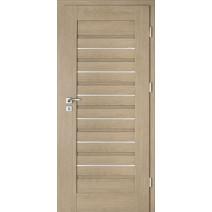 Interiérové dveře Intenso Lion Steel W-1