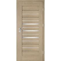 Interiérové dveře Intenso Lion Steel W-2